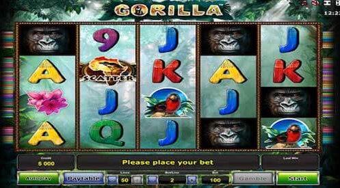 gorilla tragaperras novomatic